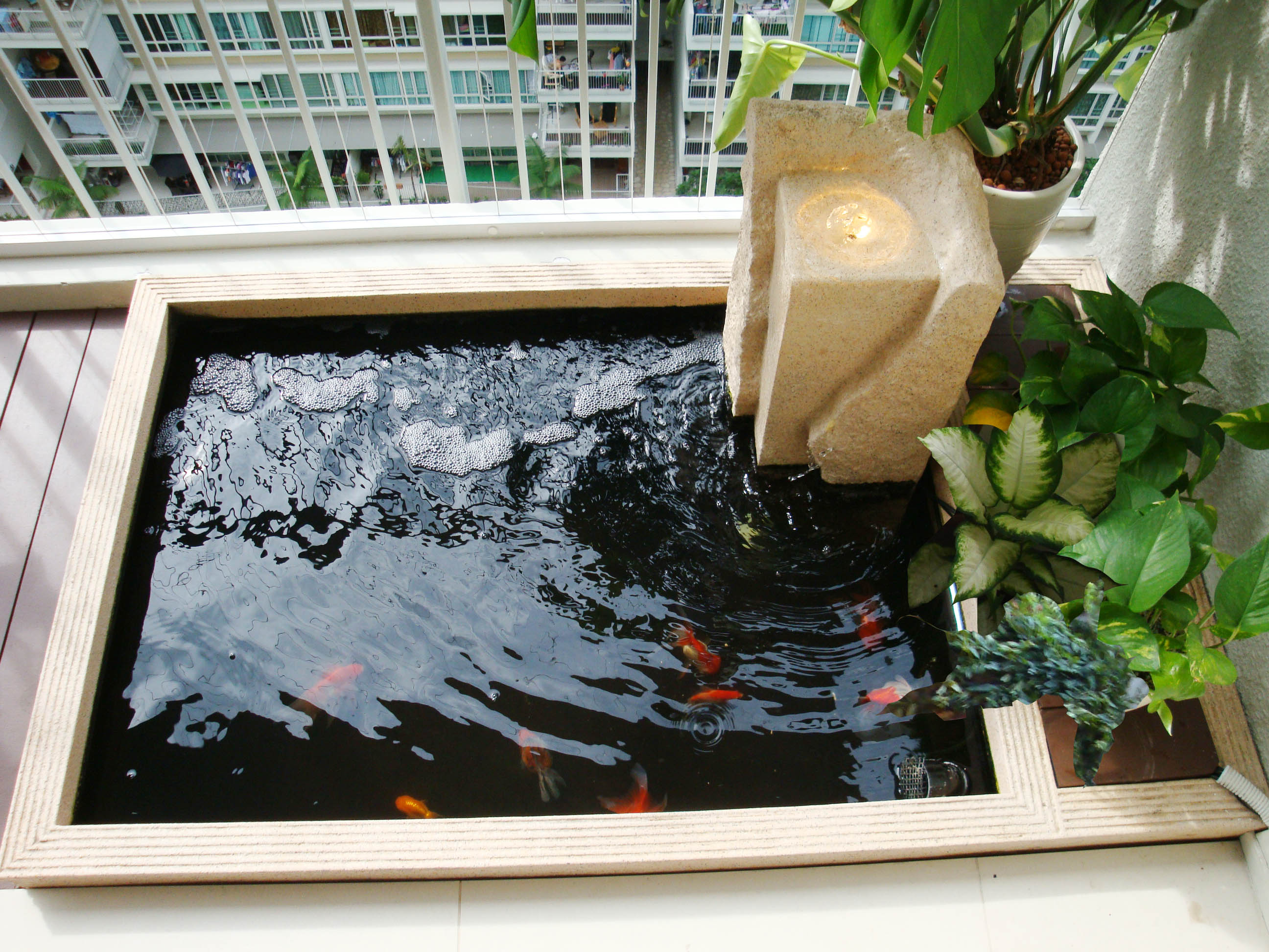 Modern Design Aquatic Pond at Balcony