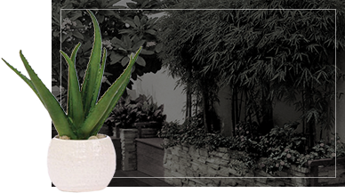 landscape background with garden pot