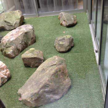 artificial grass with a few artistic rocks