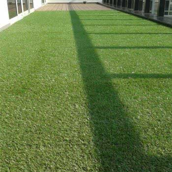 close-up shot of artificial green grass