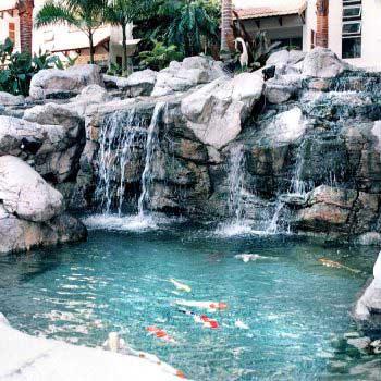 Condominium Koi Pond Project