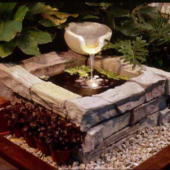 indoor water feature with ornamental plants