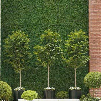 vertical green grass wall display