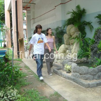 celebrities at fukai for water feature and koi pond shoot