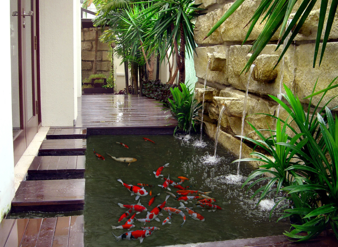 koi pond with water feature